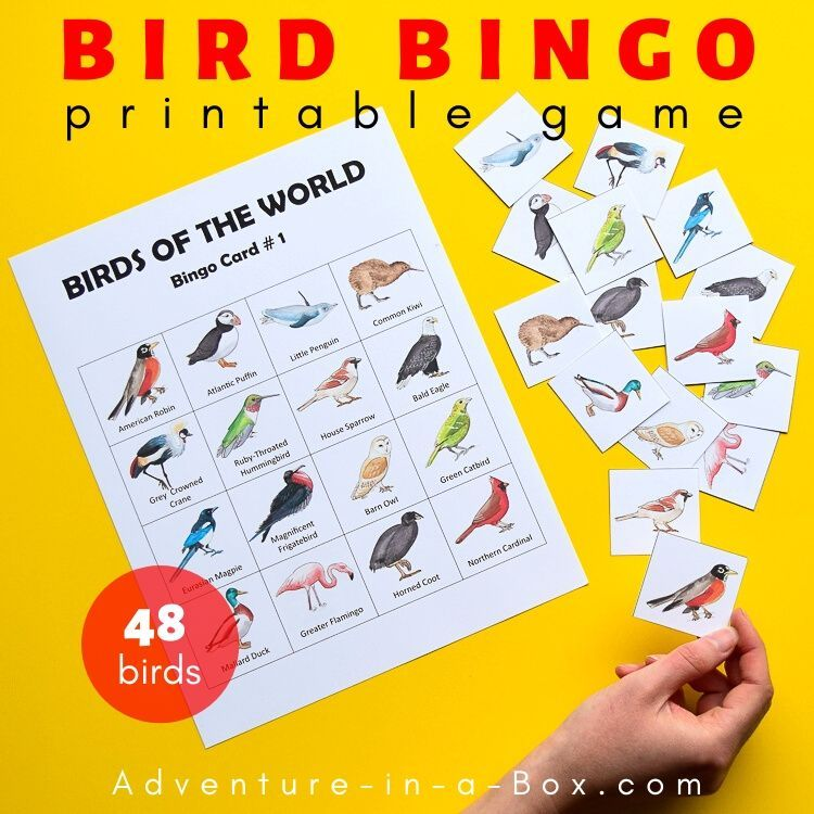 Birds Free Pattern Block Designs In 2021 Bingo Printable Egg Card Printable Games