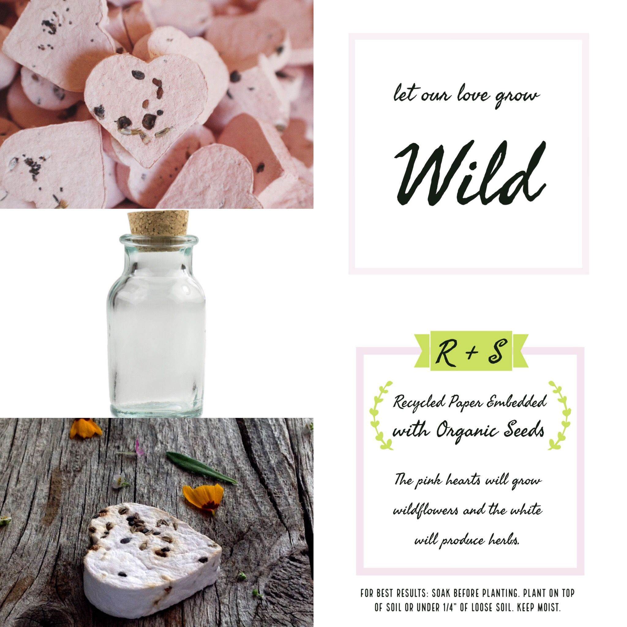 Seed Bomb Wedding Favors. Card designed by Rachel Lessne. Email ...