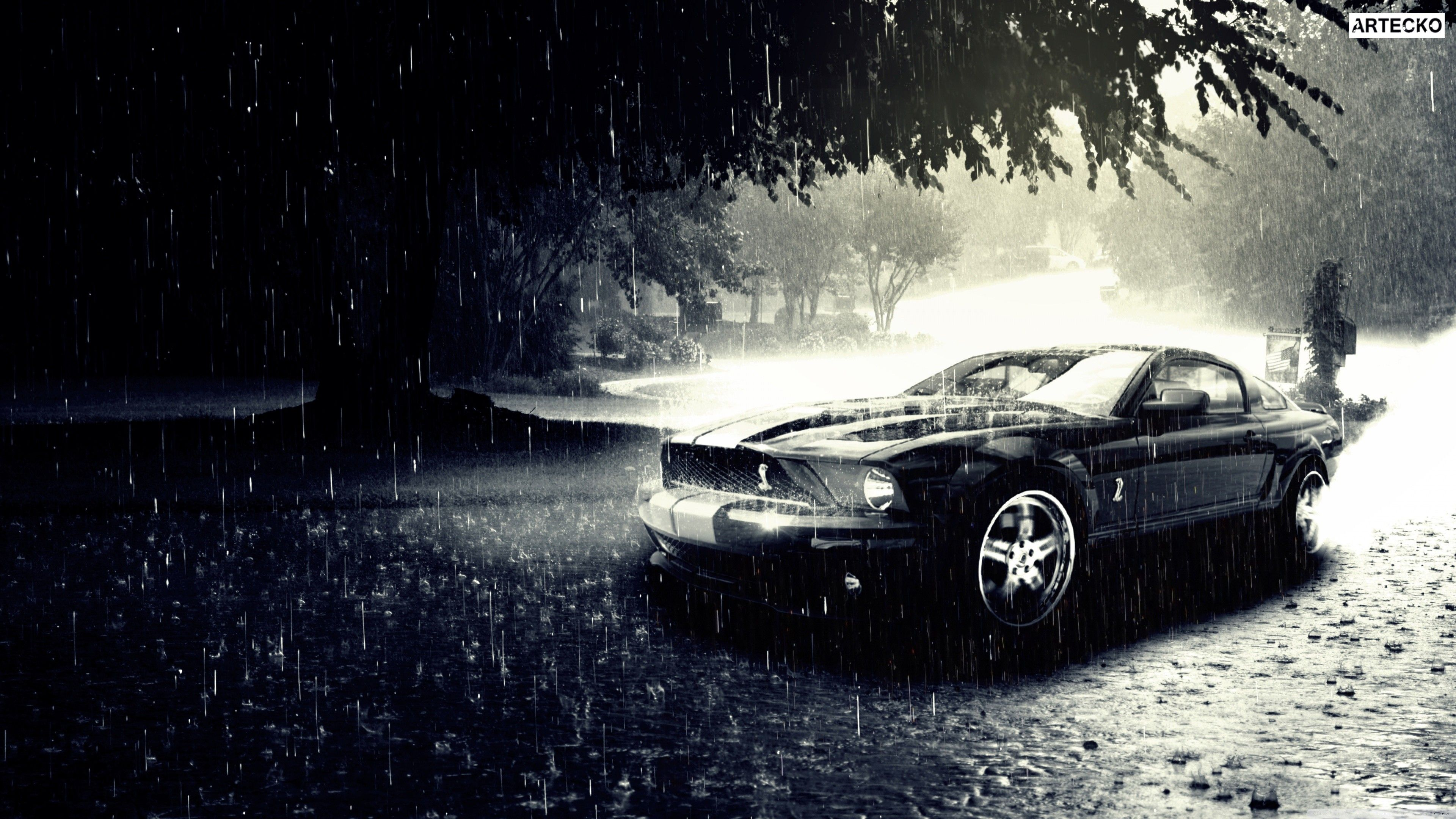 Ford Mustand Mustang Wallpapers Ford Wallpapers Cars Wallpapers Black Wallpapers Mustang Wallpaper Mustang Ford Mustang