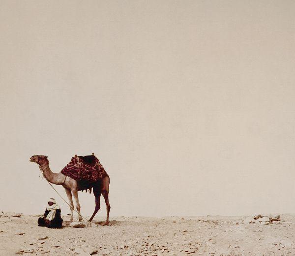 . Saqqarah . by Stuart Lee