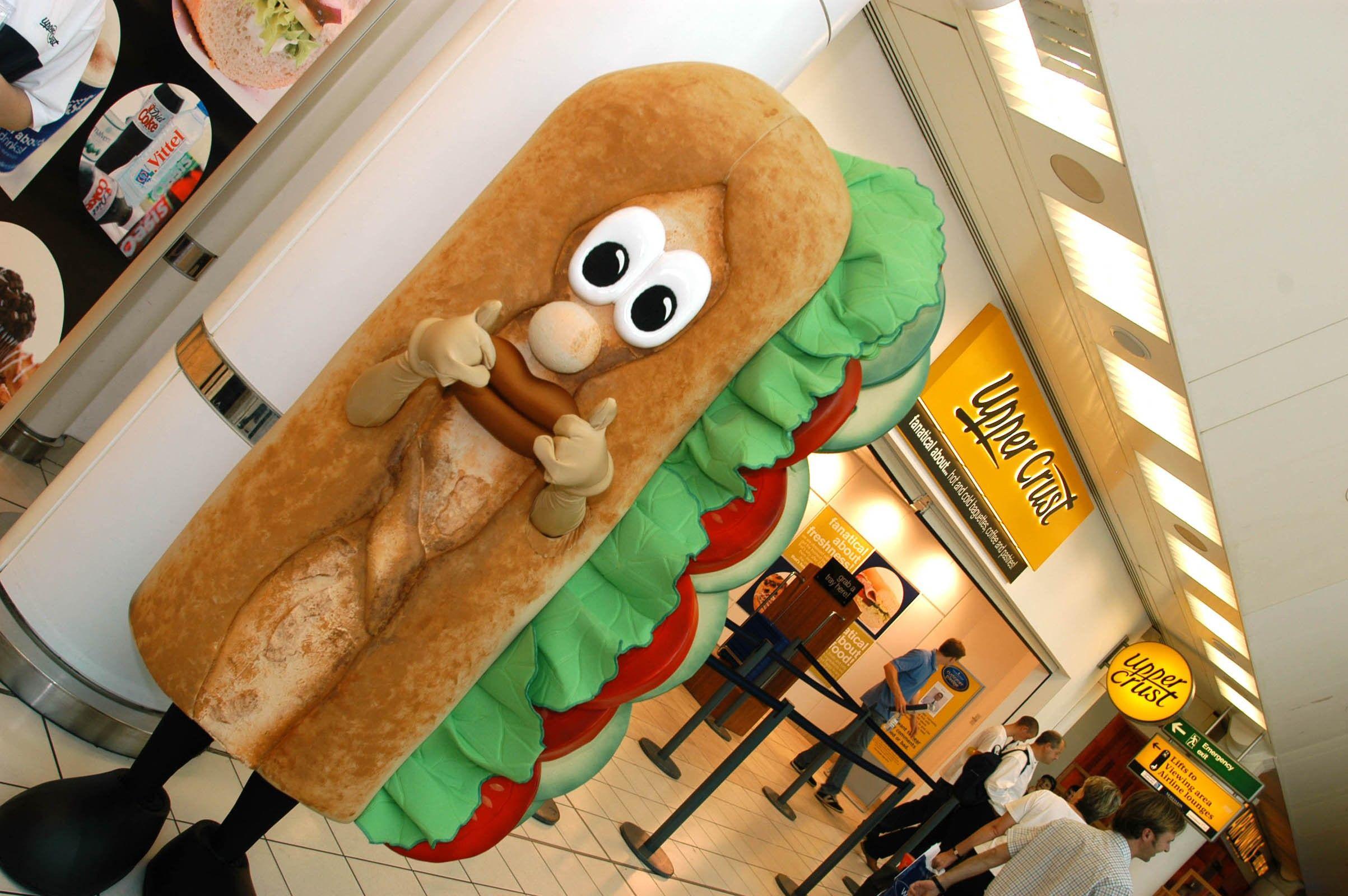 Baggy mascot costume character mascot adult
