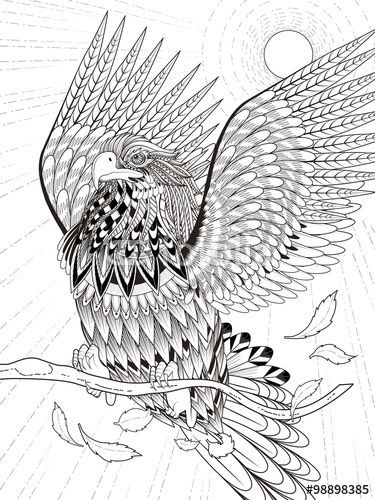 Vector flying eagle coloring page