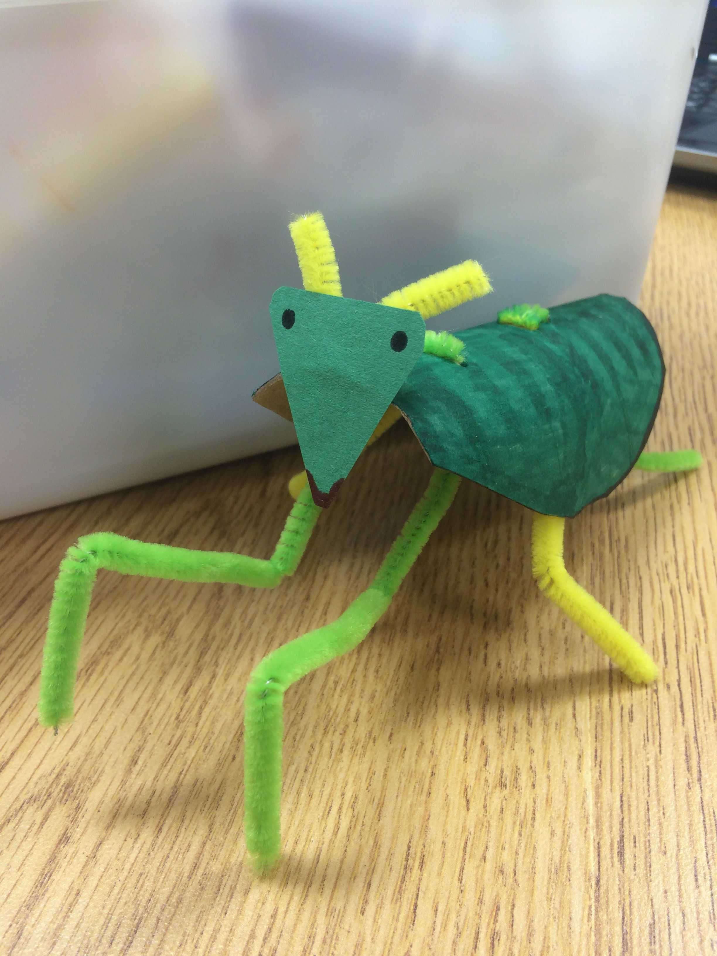 Peter the praying mantis cut a paper towel roll in half for Pipe craft