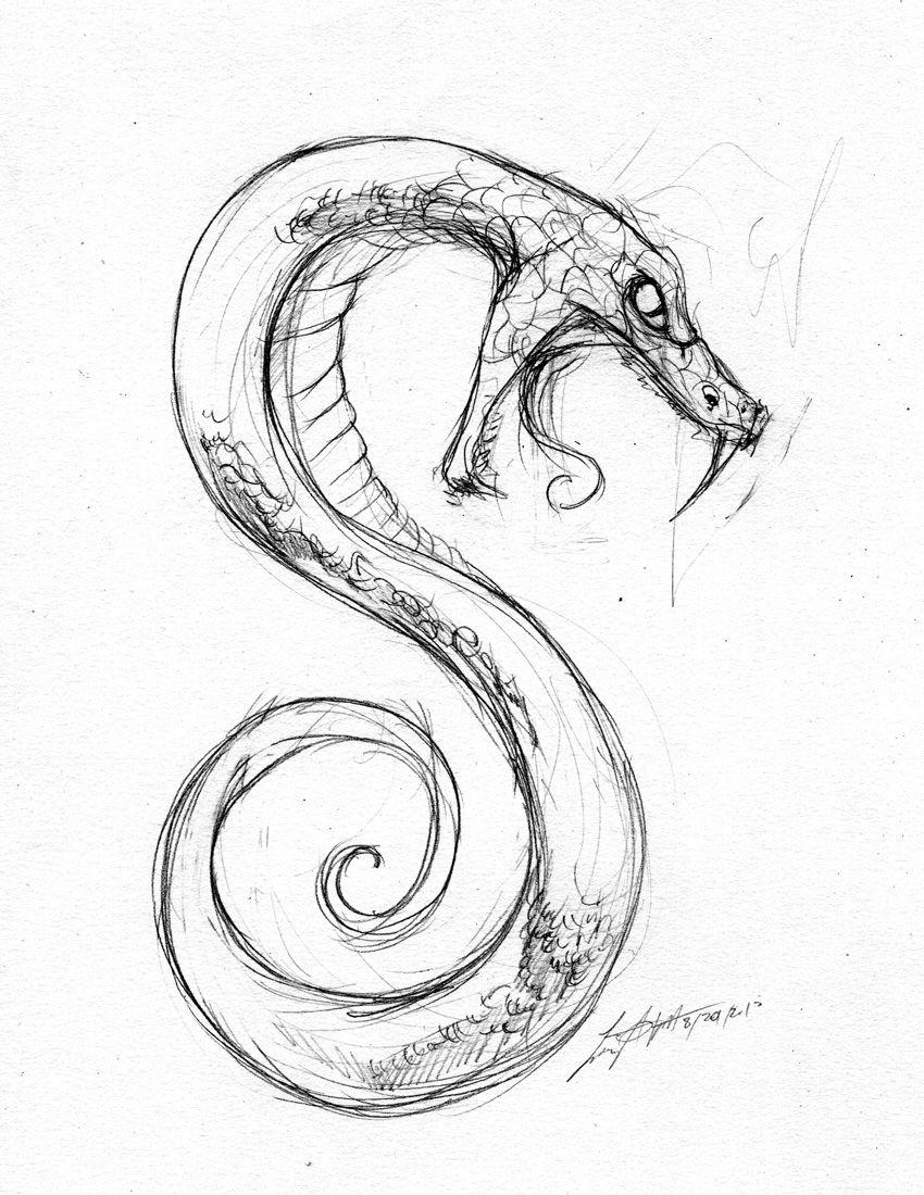 Открытки тексты, змеи картинки красивые нарисованные