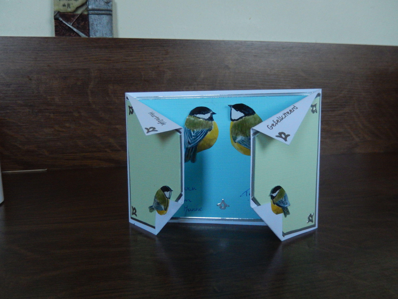 3D -kaart vogels
