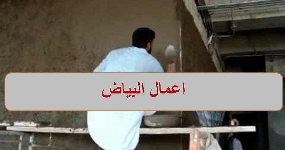 اعمال البياض والادوات المستخدمة Ladder