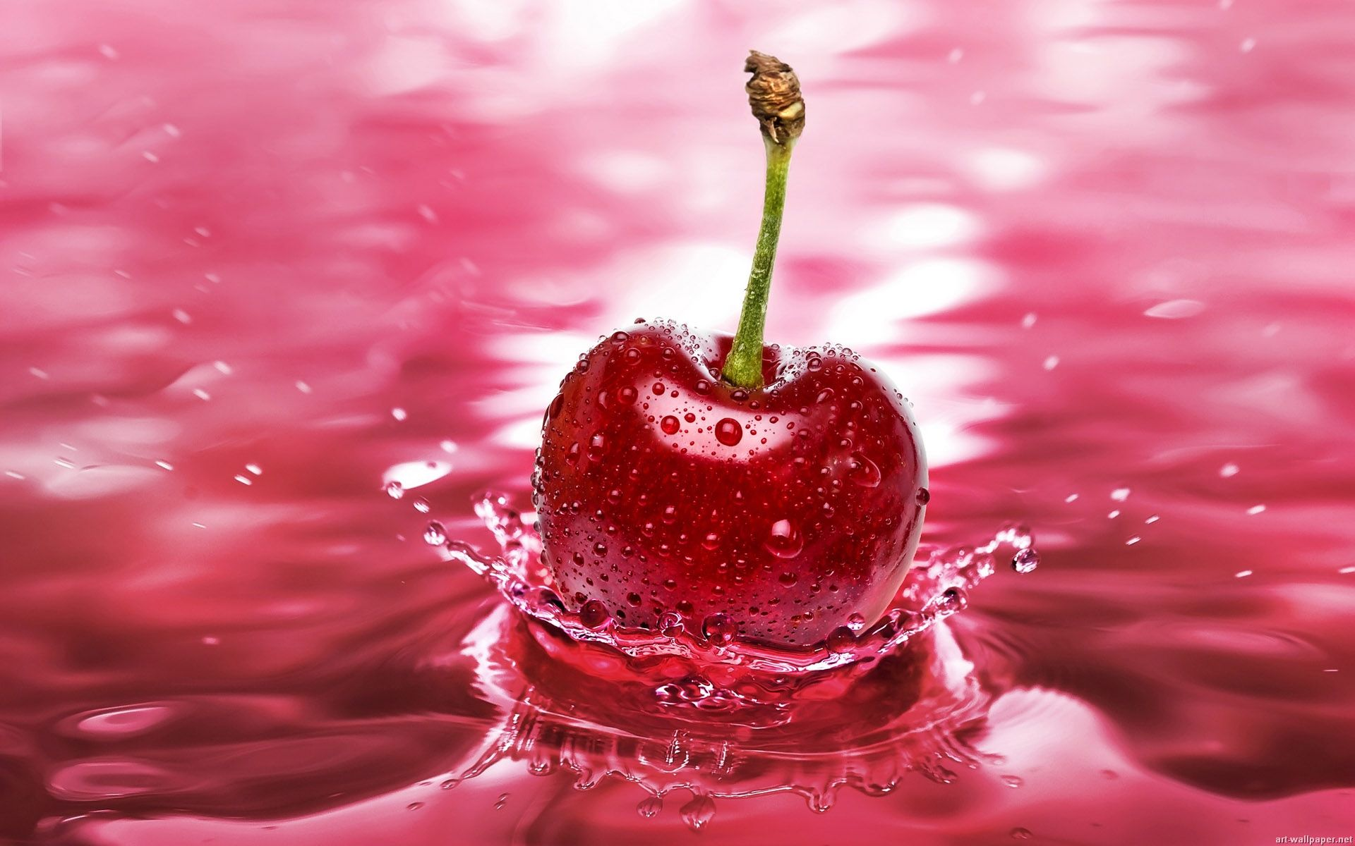 Fresh Red Berry 1080p Hd Wallpaper For Desktop Fruit Splash Fruit Wallpaper Cherry Fruit Hd wallpaper red fruit cherries berries