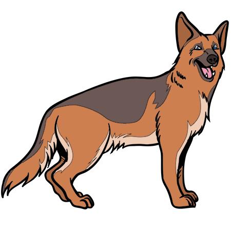 Coloriage chien berger allemand a imprimer dessin - Dessin d un chien ...