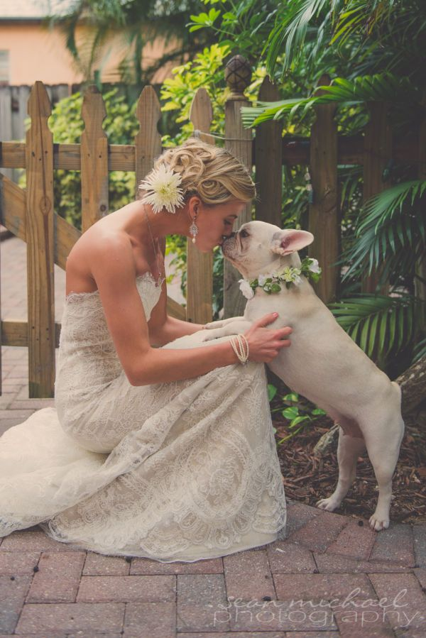 Foto divertida da dupla: noiva e cão.