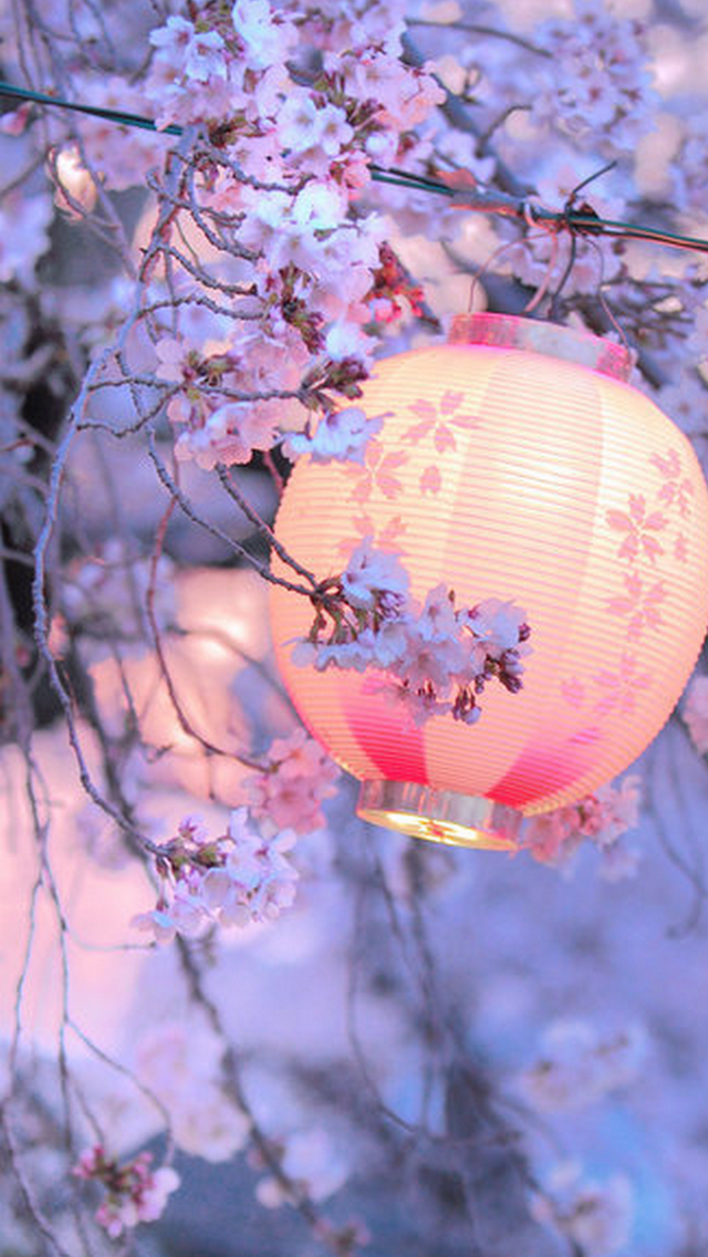 The Kimono Gallery Seni Jepang Poster Bunga Bunga Sakura
