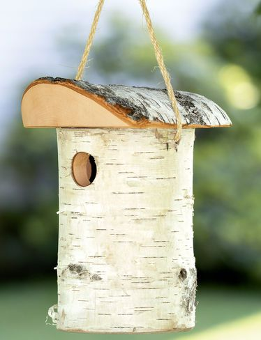 Window Bird House Window Nest Box 99 Orders Ship Free