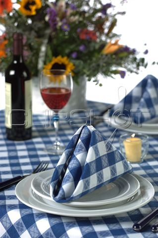 Dorothy: Table setting with blue gingham tablecloth   .✿⊱╮Blue ...