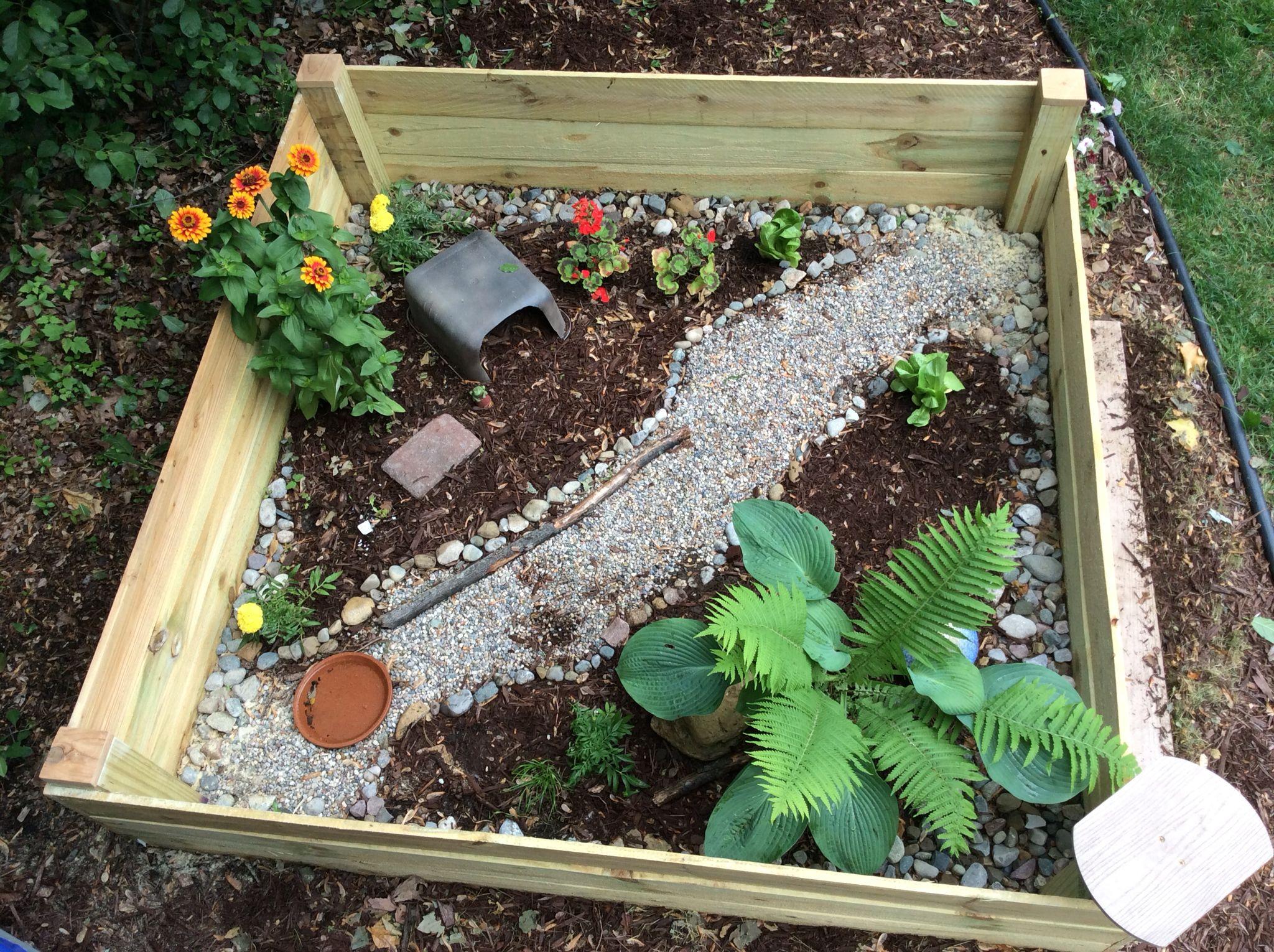 Outdoor Tortoise Enclosure Made Using Cedar Fence Boards