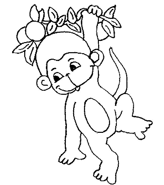 monkey template animal templates color me pinterest monkey