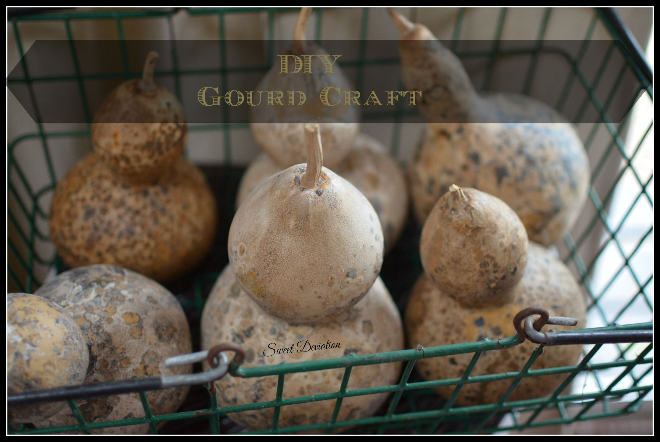 Diy gourd craft with images gourds crafts yarn bowls