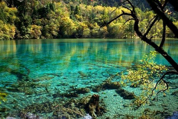 Resultado de imagem para parque nacional jiuzhaigou china Lago das Cinco Flores