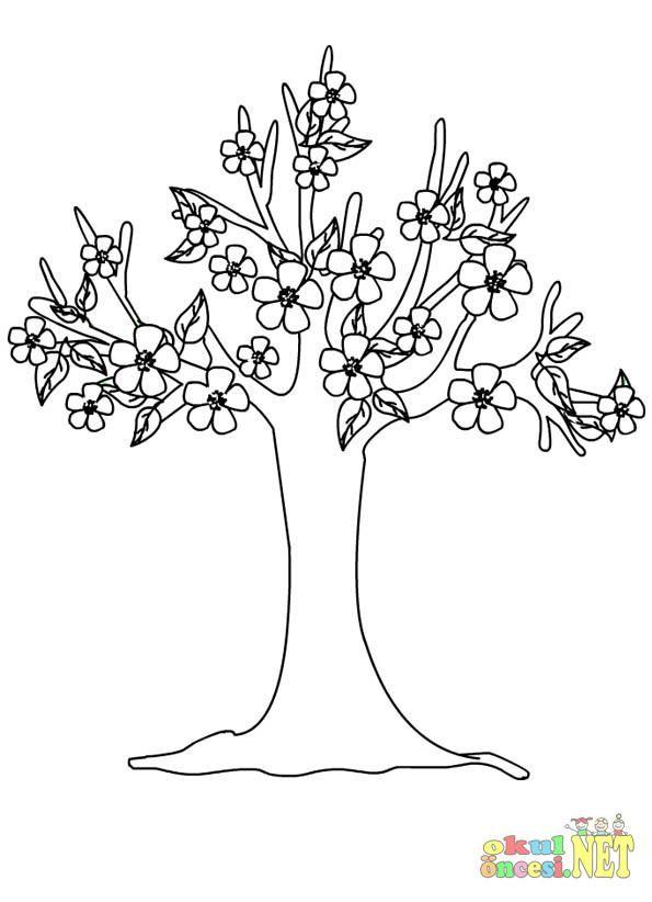 Sonbahar Ağaç Boyama Sayfası Boyama Sayfasi Tree Leaves Leaf
