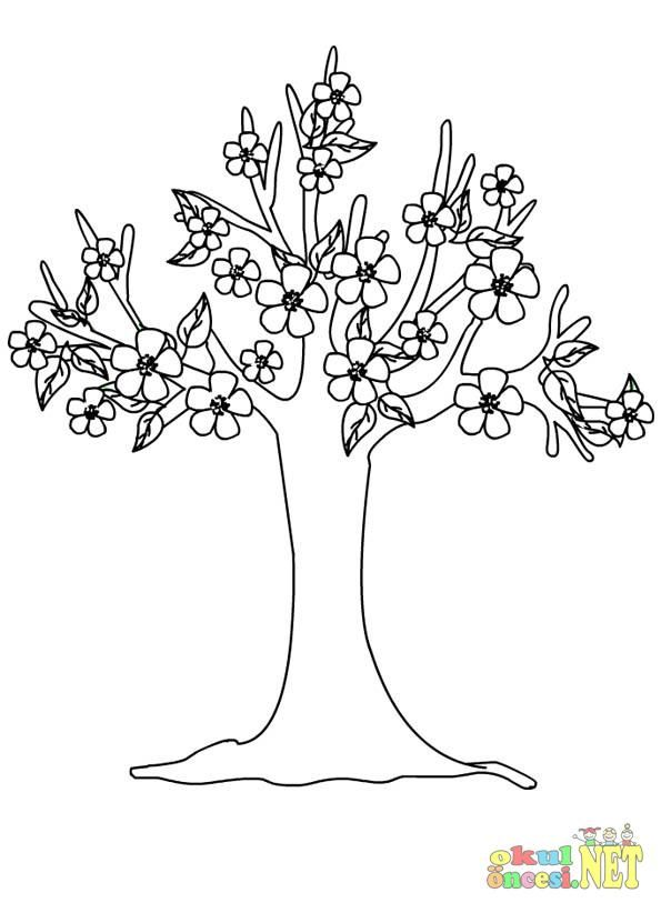 Sonbahar Ağaç Boyama Sayfası Firdevs Pinterest Tree Leaves