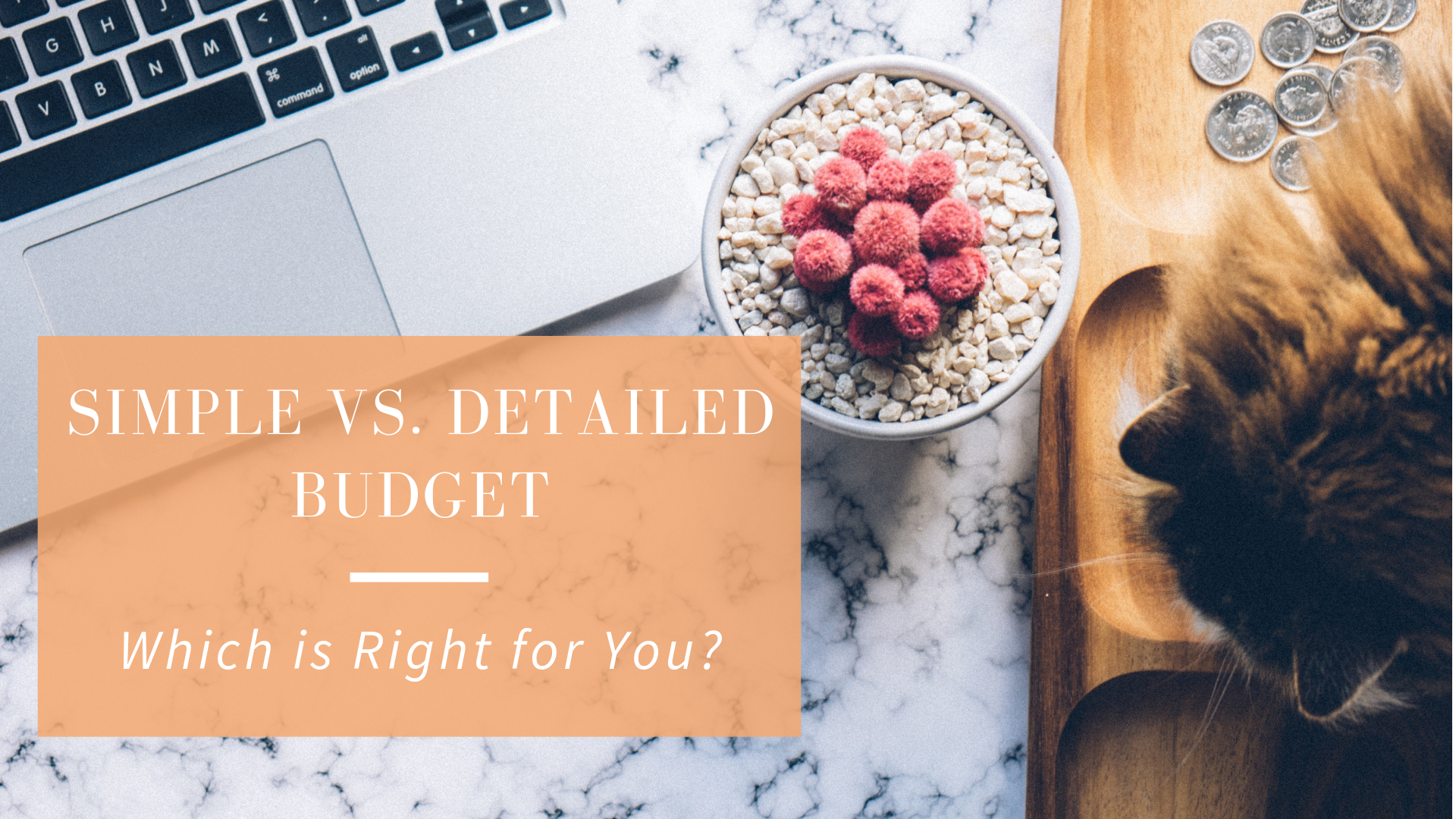 Sign Up For My Newsletter And Download My Free Budget