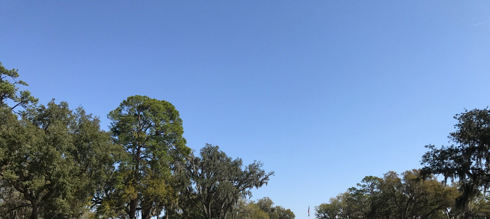 Jacksonville Weather!!  learnyourrights.com