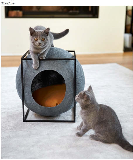 Modern furniture for cats to keep your place stylish and