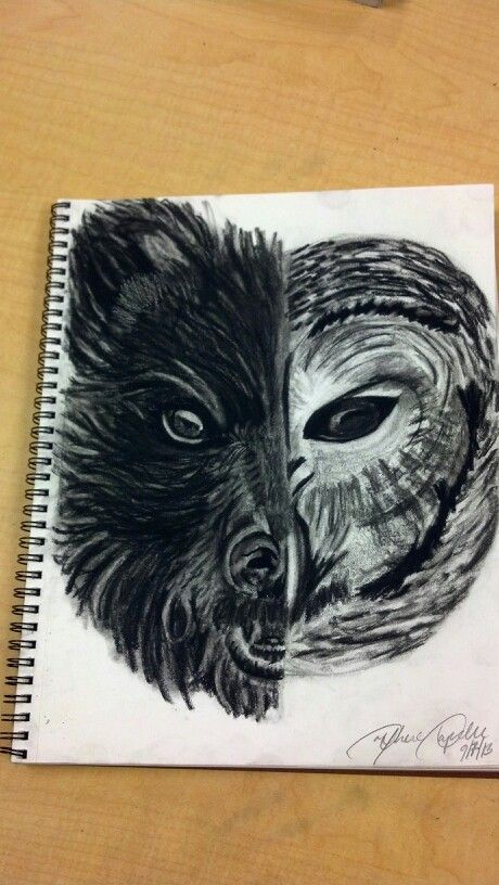 5b763d865 Spirit animals half bear half owl. Bear to see through others while the owl  sits there wisely observing