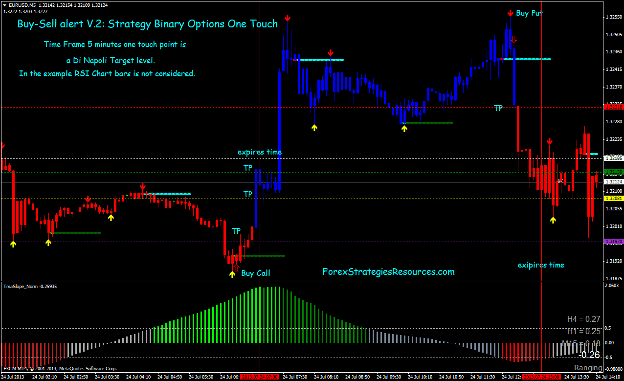 Just what is the binary options trading system 2014