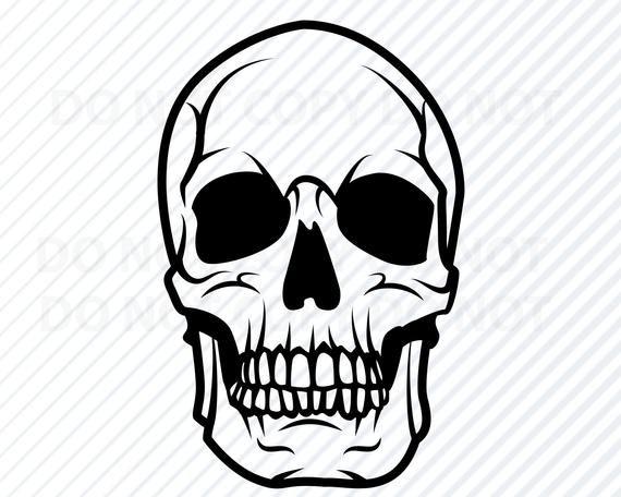Skull Svg Human Skull Vector Images Silhouette Clip Art For Etsy Silhouette Clip Art Skull Stencil Skull Silhouette
