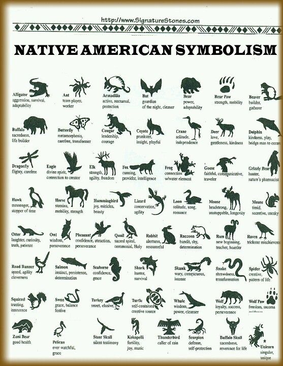 Native American Life And Culture Has Always Fascinated Me Here Are
