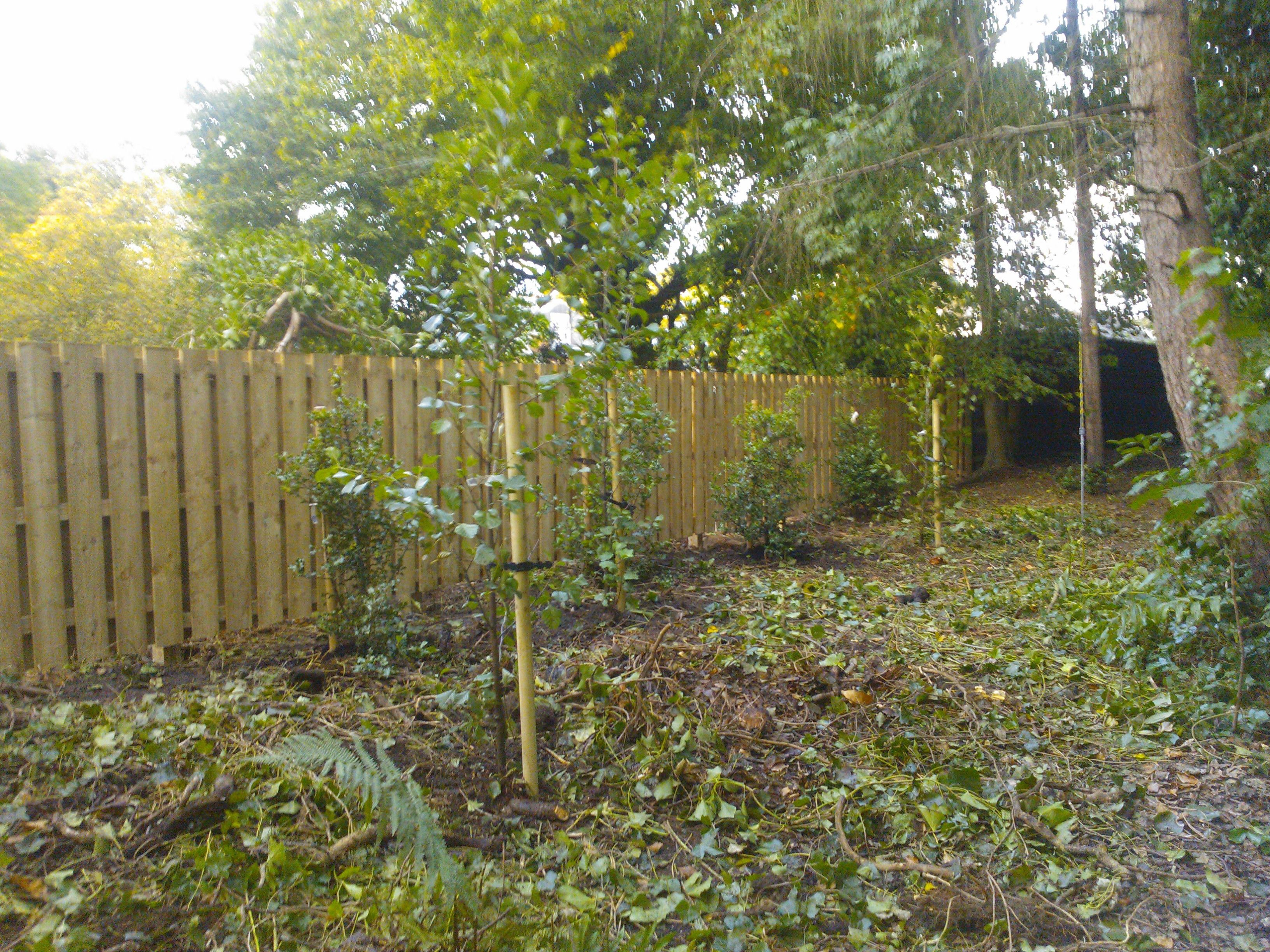 Garden fencing edinburgh garden fencing edinburgh pinterest garden fencing edinburgh baanklon Gallery