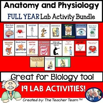 Anatomy and Physiology Lab Activity Bundle   Labs, Activities and ...