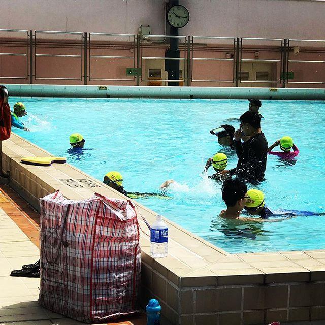 小朋友努力的游呀游的因為夏天的時候游水就是最舒服的了咁多個小朋友同埋家長選擇游水你仲等乜嘢啊 #幼兒 ...