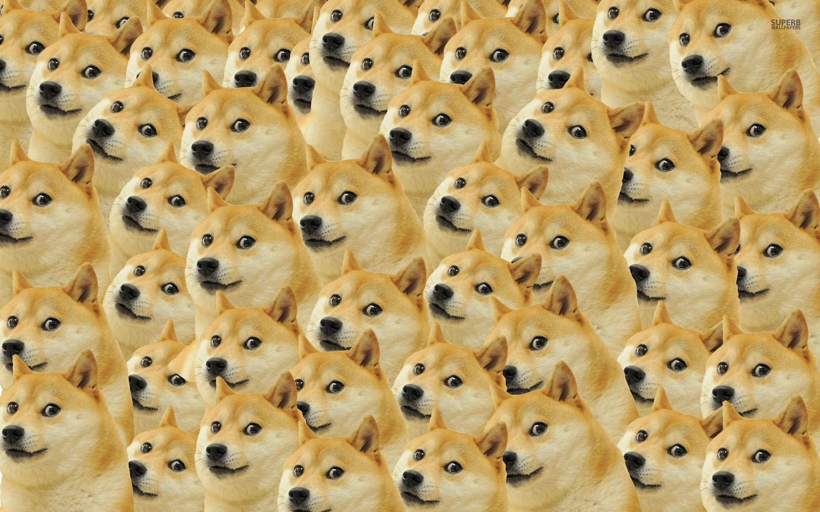 Happy Dog Doge Meme Mens T Shirt