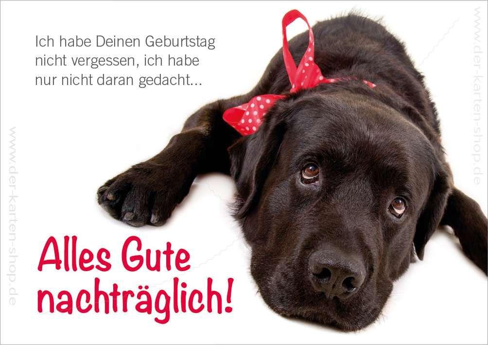 Doppelkarte Geburtstagskarte Geburtstag Vergessen Susser Hund