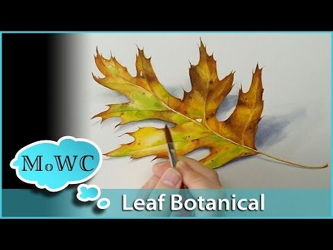 Realistic Leaf Painting In Watercolor Botanical Illustration Botanical Watercolor Painted Leaves Watercolour Tutorials