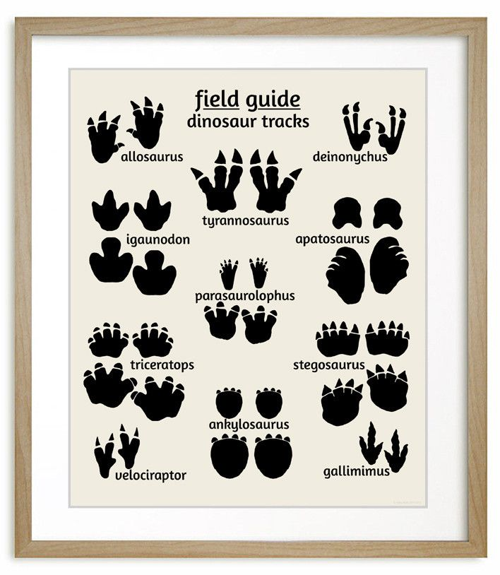 Dinosaur Footprints Nursery Art