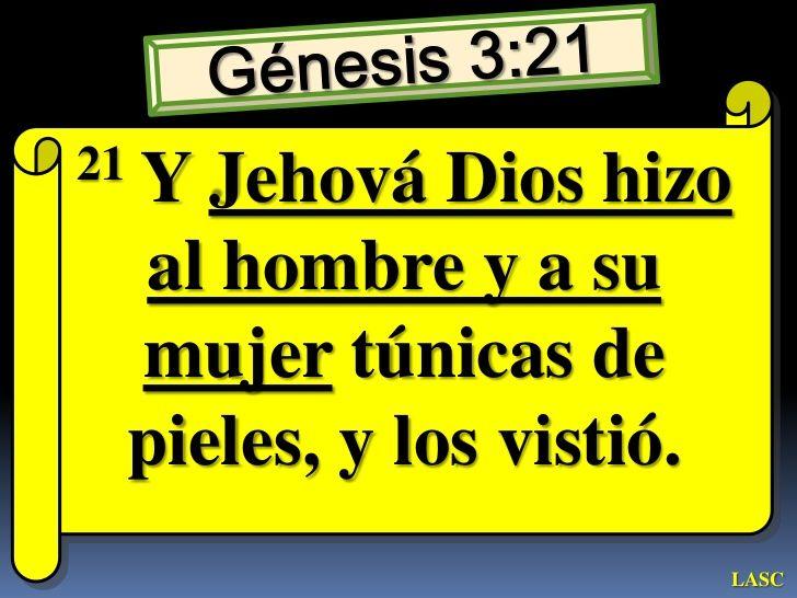 21   Y Jehová Dios hizo     al hombre y a su     mujer túnicas de     pieles, y los vistió.                         LASC