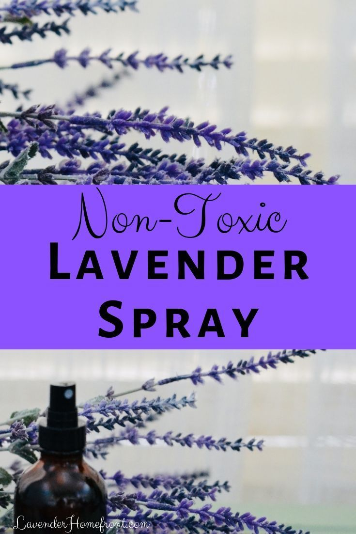 This non-toxic and aromatic air freshener is great for spraying on clothing, couches, pillows and beds. Lavender helps to calm and de-stress.