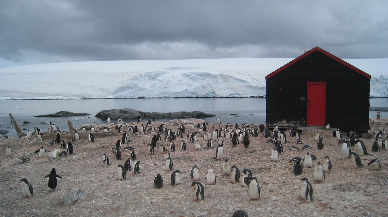 http://freecabinporn.com/post/34644356899/cabin-in-port-lockroy-antarctica-submitted