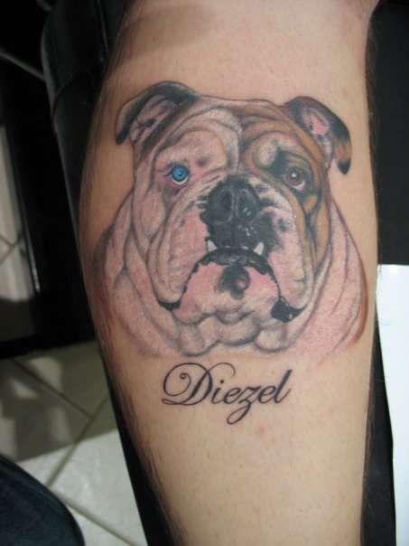 bulldog tattoos google search tattoo ideas pinterest tattoo tatting and tatoo. Black Bedroom Furniture Sets. Home Design Ideas