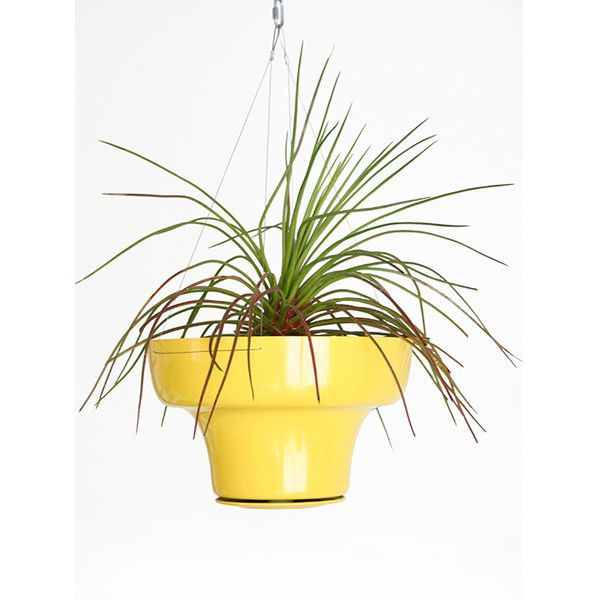 Wallter Hang Pot - Yellow ($125) ❤ liked on Polyvore featuring ...