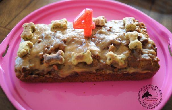 Happy Birthday Remington Homemade Dog Cake And Treats Biscuits Kansas City Pet Photography