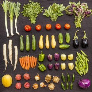 Johnsons Backyard Garden is a certified organic vegetable ...
