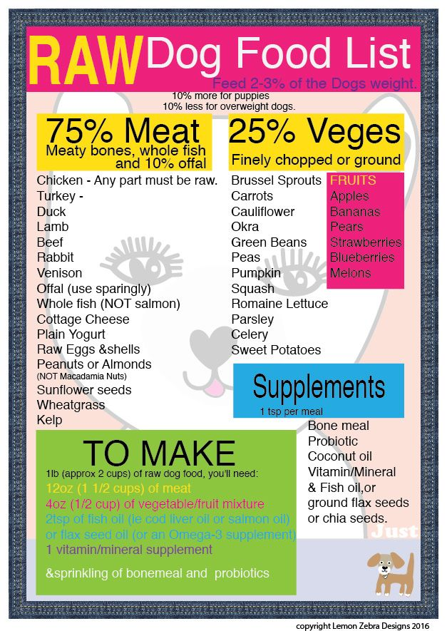 Raw dog food recipe to live by pinteres raw dog food recipe to live by forumfinder Gallery