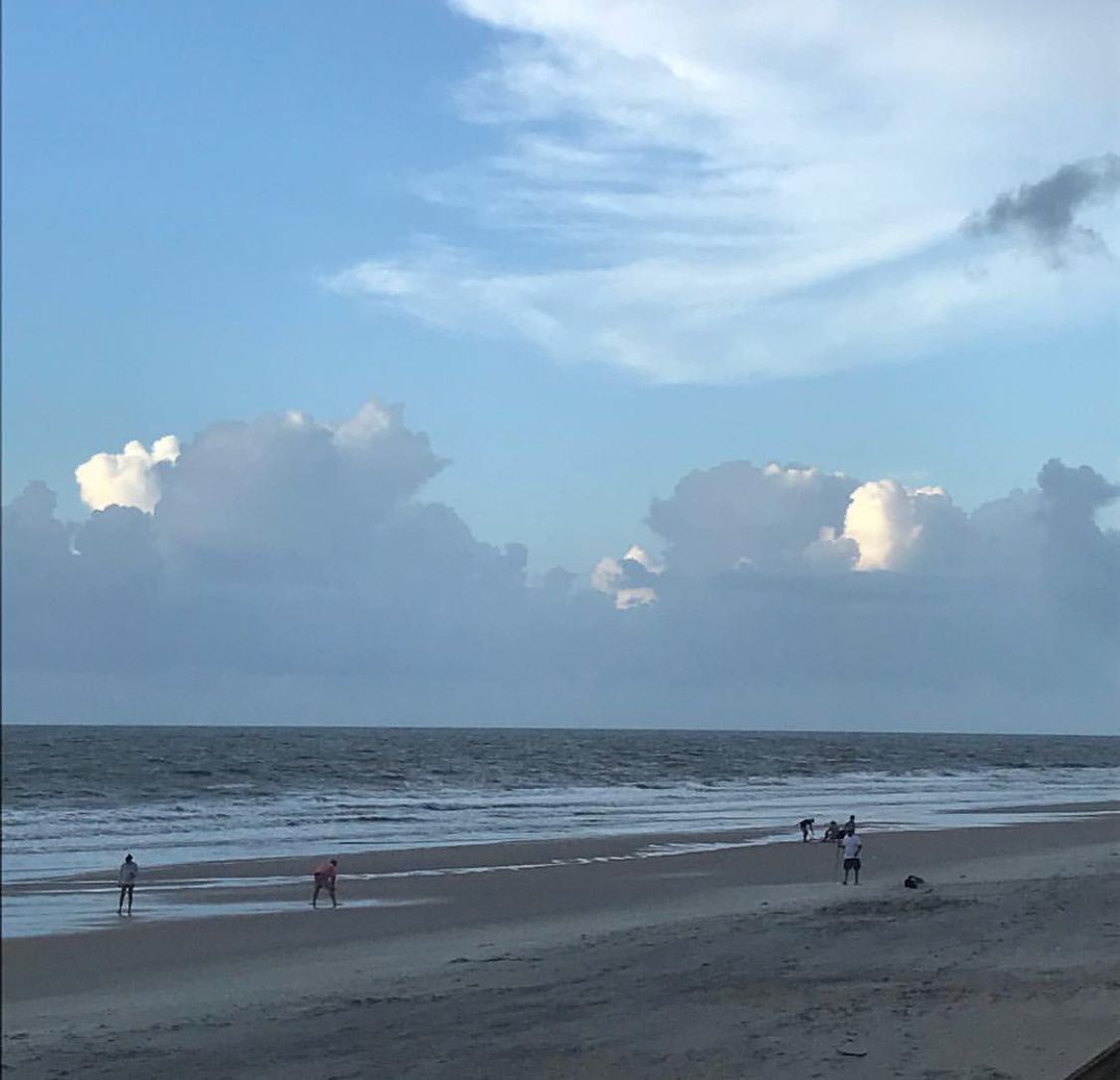 Pawleys Island Beach: Pawleys Island, Island, Outdoor