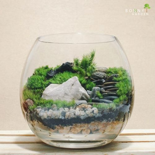 Modern  Unique Moss Terrarium Ideas #TerrariumIdeasSand Terrarium