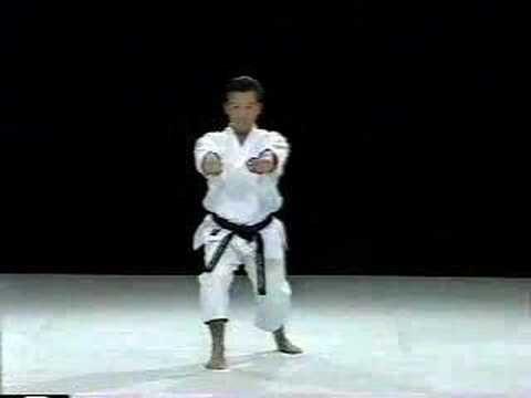 Saifa Shito Ryu With Images Karate Karate Martial Arts