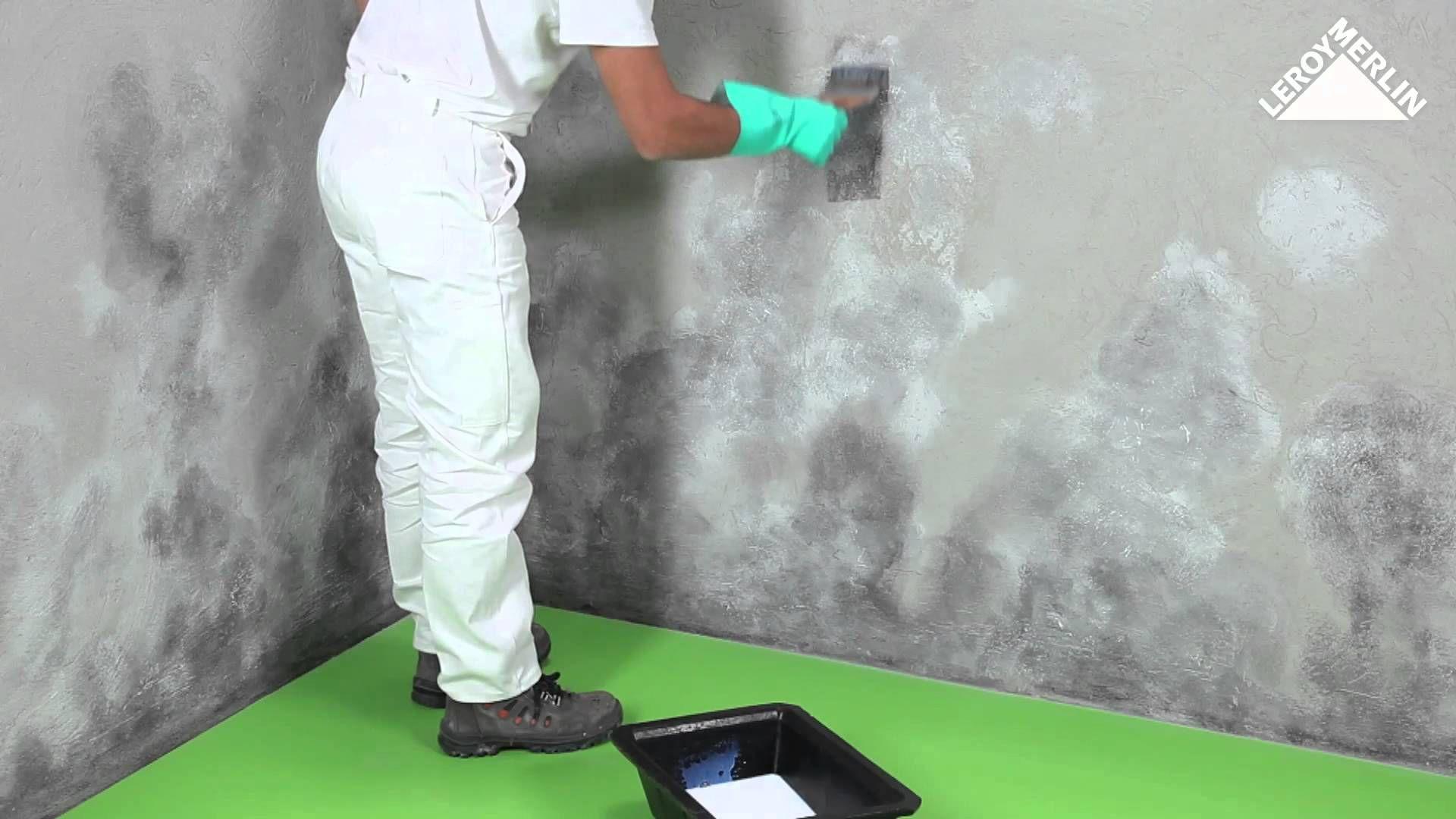 Comment Traiter Le Salpetre Les Moisissures Et Les Taches D Humidite Salpetre Taches De Moisissure Moissisure