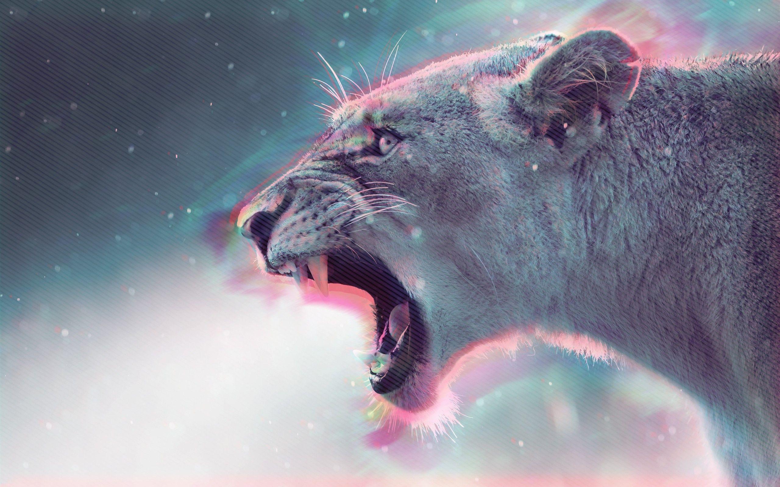 Pumas Big Cats Animals