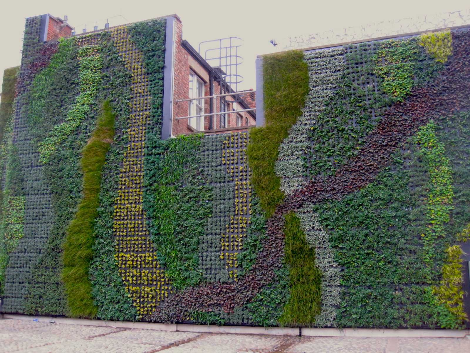 Large scale outdoor living wall covering the side of the for Outdoor wall coverings garden